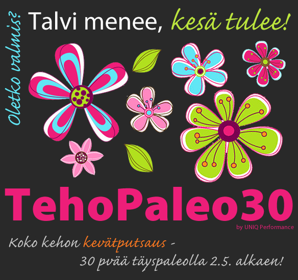 TehoPaleo30