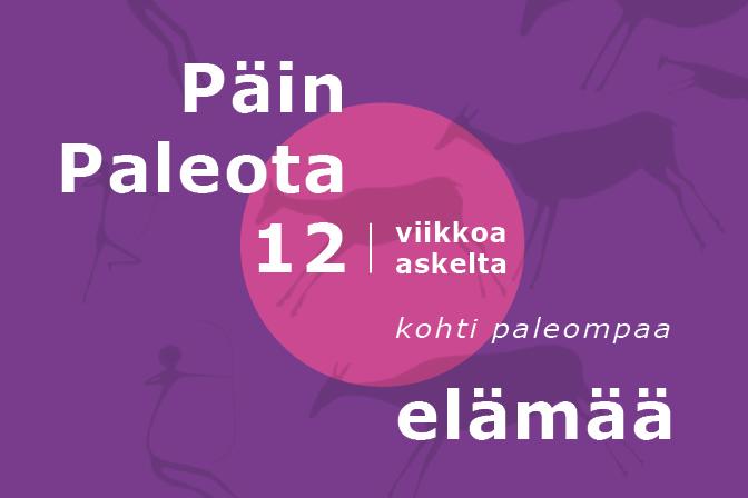 PäinPaleota12