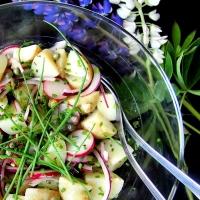 Uusintana kesän kirkas perunasalaatti