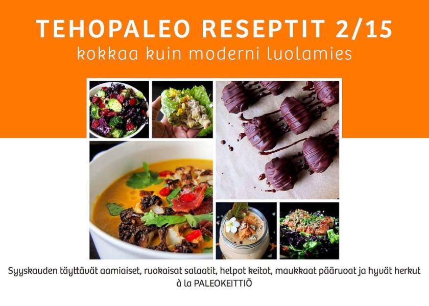 TehoPaleo -reseptivihkonen
