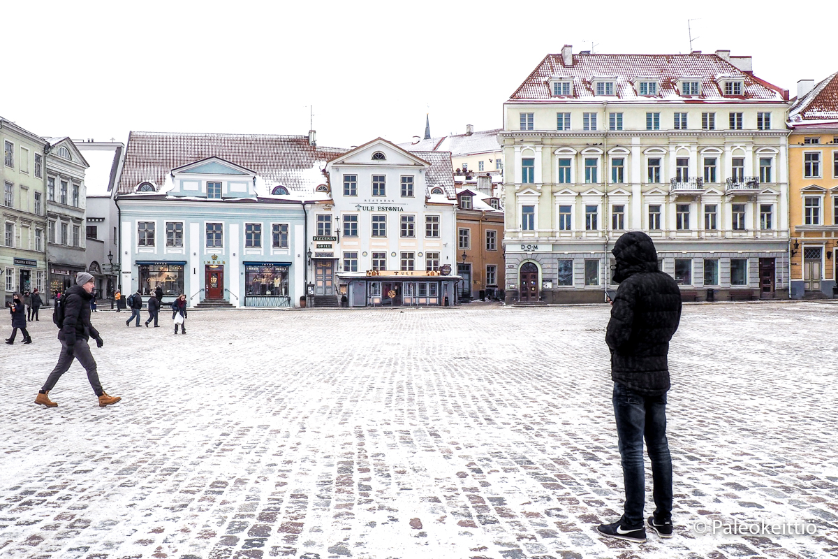 Raatihuoneentori, Tallinna | paleokeittio.fi